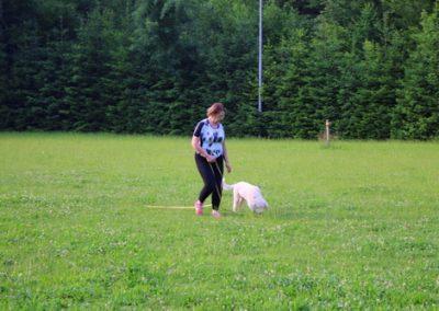 tečaj šolanja psov športno kinološko društvo bela krajina