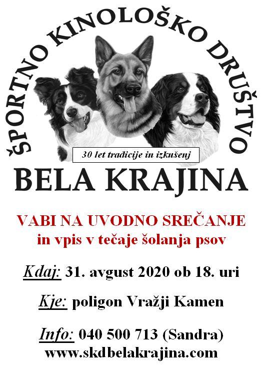 šolanje psov avgust 2020